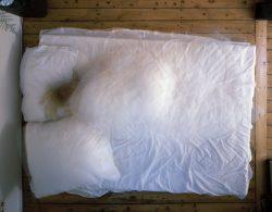 """Matthias Langer, ohne Worte VI aus: """"Das Gegenteil von wach"""", 2006 © Matthias Langer"""
